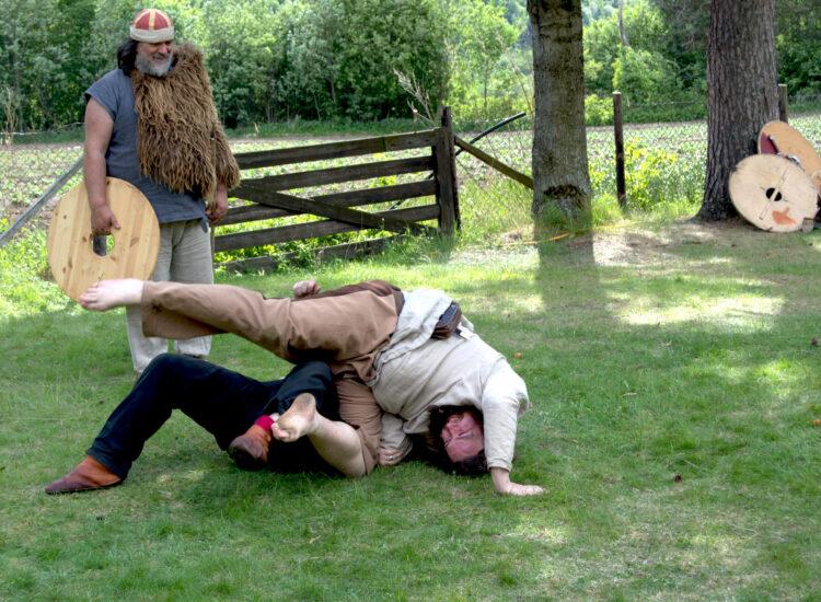 Vikings fighting