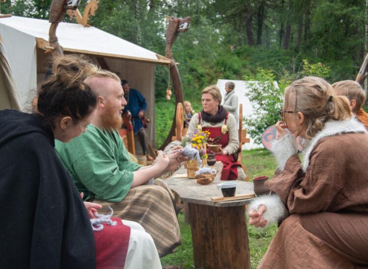 Vikings talking